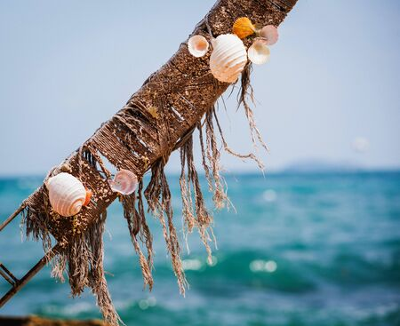 Holiday decoration. Summer beach concept. Ocean wildlife. Abstract sea shell illustration. Reklamní fotografie