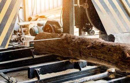 Modern sawmill. Industry sawing boards from logs. Background Stock fotó