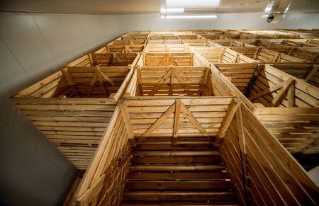 Empty industrial freezer warehouse for vegetable storage.