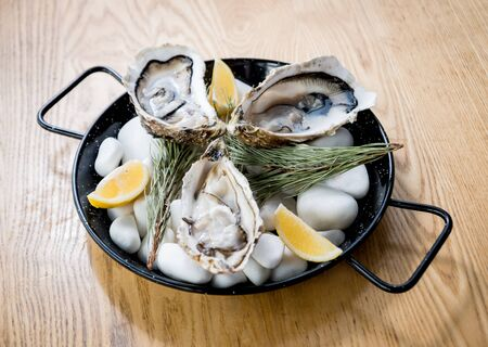 Fresh oysters on a plate with ice. Restaurant 版權商用圖片