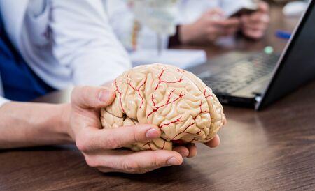 Doctor holding plastic model of human brain.
