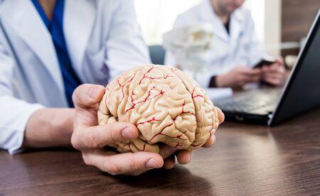 Doctor holding plastic model of human brain. Background