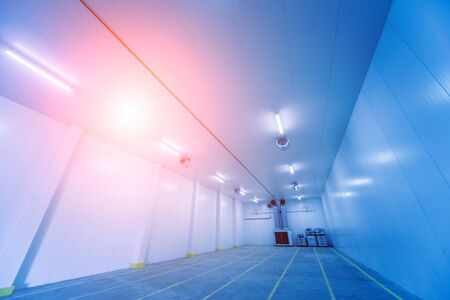 Empty industrial freezer warehouse for vegetable storage. Background