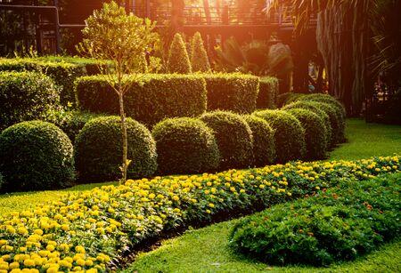 Luxury landscape design of the tropical garden. 写真素材