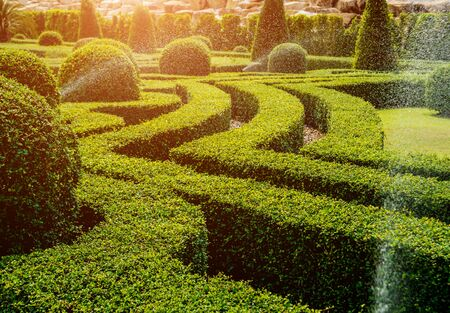 Luxury landscape design of the tropical garden. Beautiful view of landscaped tropical garden. Watering