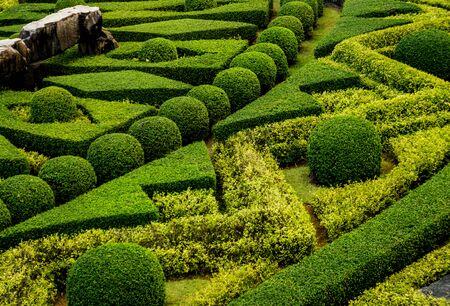 Luxury landscape design of the tropical garden. 版權商用圖片