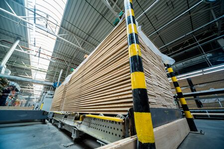 Production line of the wooden floor factory. CNC automatic woodworking machine. 版權商用圖片
