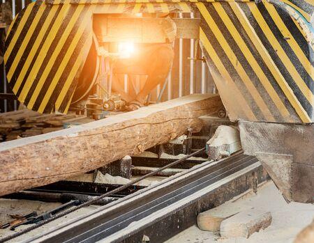 Modern sawmill. Industry sawing boards from logs 版權商用圖片