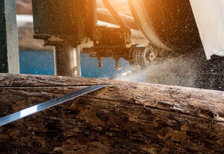Modern sawmill. Industry sawing boards from logs Imagens