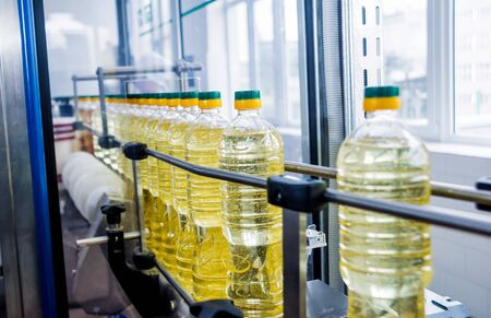 Bottling line of sunflower oil in bottles. Vegetable oil production plant. High technology. Industrial background