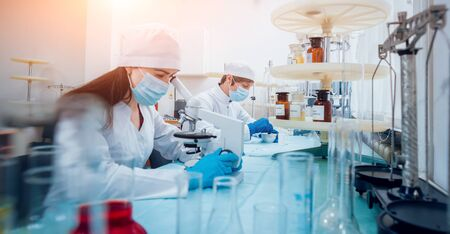 Science technician at work in the laboratory. Stock Photo