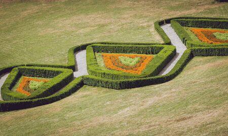 Bushes maze. Landscape design. Light green background.