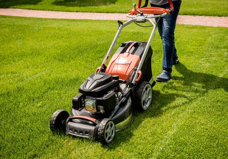 Gardener mowing the lawn. Landscape design. Green background Imagens