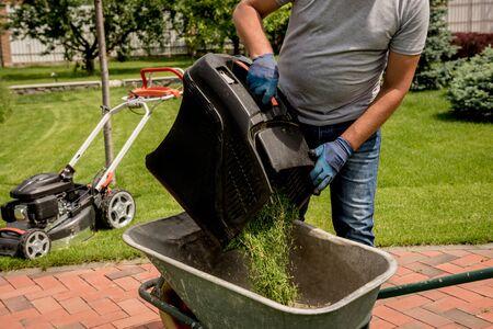 Gardener emptying lawn mower grass into a wheelbarrow after mowing. Landscape design. Gardening Stockfoto - 150296792