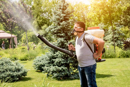 Gardener in protective mask and glasses spraying toxic pesticides trees and bushes. Landscape design. Gardening Foto de archivo