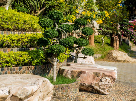 Luxury landscape design of the tropical garden. Beautiful view of landscaped tropical garden.