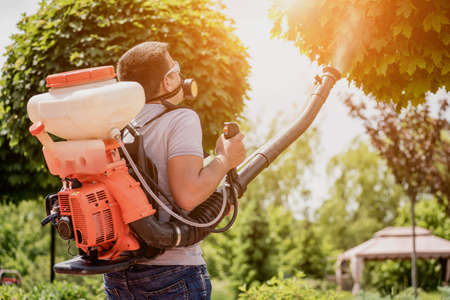 Gardener in protective mask and glasses spraying toxic pesticides trees Stock Photo