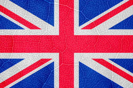 flag of great Britain on the structure of a tree leaf macro Imagens