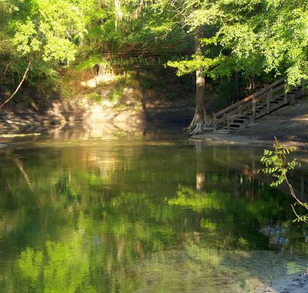 Sun illuminating the banks and trees at Lafayette Blue Springs State Park, Florida, with nice reflections in the beautiful water.