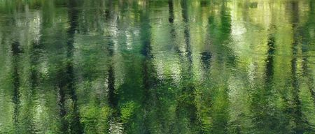 Beautiful reflections in the clear spring water at Ichetucknee Springs State Park, Florida. Stock Photo - 7433491