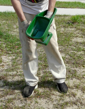 A man spreads grass seed coated with a fungicide and insecticide, using a hand-held crank spreader.