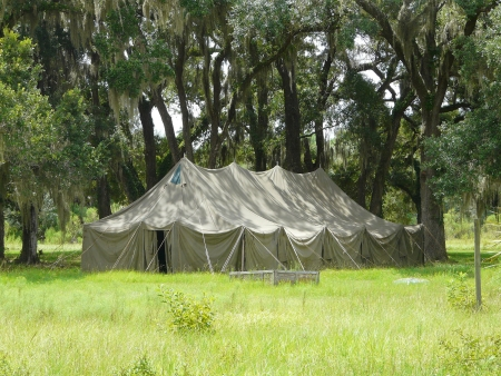 Large old tent among live oak trees with Spanish moss in a park setting. Stock Photo