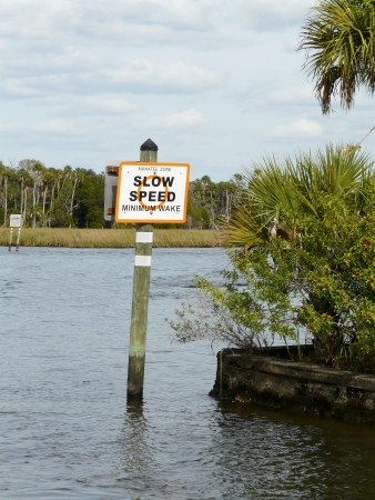 A Manatee Zone/Minimum Wake sign helps protect the endangered West Indian manatees from motorized boats in the Crystal River, Florida. Stock Photo - 17974323