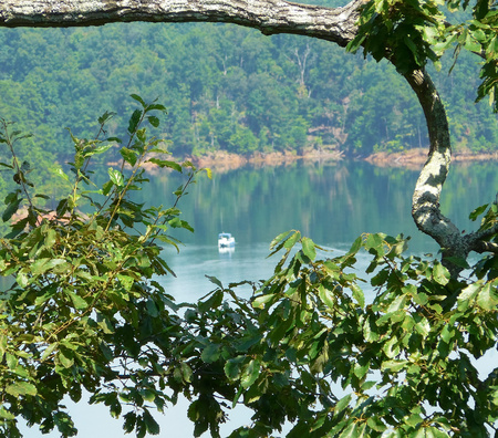 A small boat is seen through the foliage on glassy Carters Lake in the northern Georgia mountains  A tree branch and leaves provide a natural frame