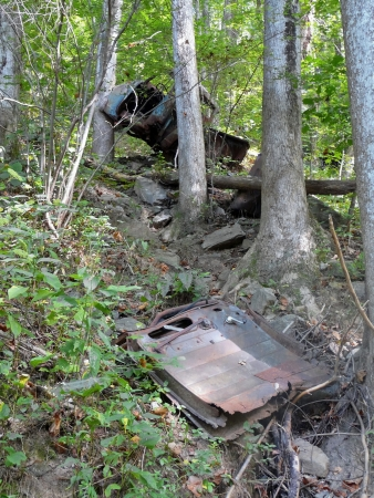 A pickup truck rests against a tree, and parts are scattered in the woods at this old accident site in the mountains of Georgia  photo
