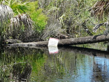 botar basura: Signo de la conservación del Medio Ambiente Por favor tome todas Botellas Latas envolturas para evitar tirar basura en un río que desemboca en el Golfo de México en la Florida central. Foto de archivo