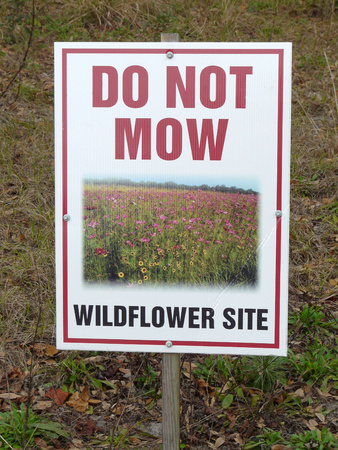 Conservation sign prohibiting mowing where wildflowers grow in the spring and summer at a park in central Florida.