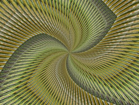 Fractal textured background in warm colors of brown, yellow, and green, with curved lines resulting in a pinwheel appearance. Stock Photo