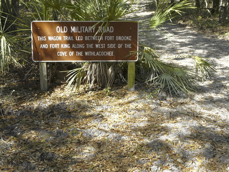 An old wagon trail between Fort Brooke and Fort King in Fort Cooper State Park, Inverness, Florida, was significant in the Second Seminole War. Stock Photo