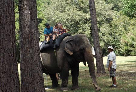 WILLISTON, FLORIDA-SEPTEMBER 21, 2019: A family rides an Asian elephant at the annual Elephant Appreciation Day at Two Tails Ranch, a privately-owned facility.