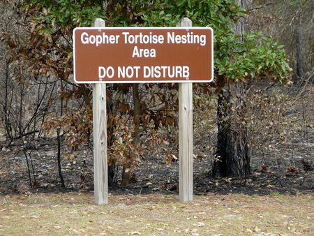 A sign posted in a coastal Georgia state park signifies efforts to protect the gopher tortoise, an endangered tortoise of the southeastern United States.