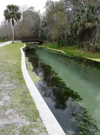 Beautiful Rock Springs Run at Kelly Park near Apopka, Florida, is part of the Wekiva River system. The wildlife preserve is popular for tubing and swimming.