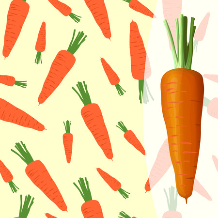 Bright tasty carrot on a white and beautiful carrot background 向量圖像