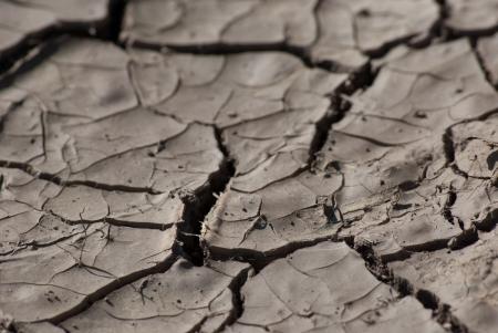 ardent: Suolo senza vita incrinato essiccazione sotto ardente sole, macro