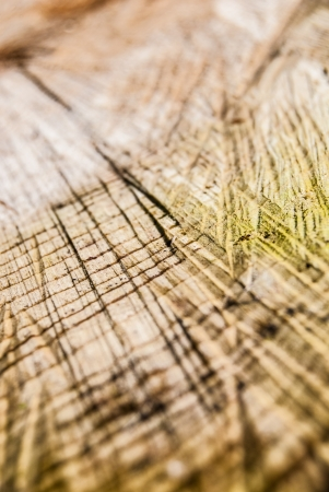 sawed: sawed wood with scratches texture close up Stock Photo