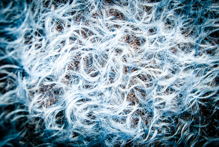 blue mohair texture background photo