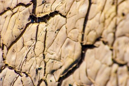 Cracked lifeless soil drying under ardent sun, macro photo