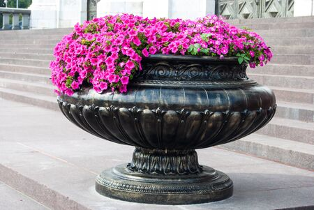 bronze bowl: red flowers in bronze bowl on stone stairs Stock Photo