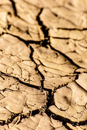 ardent: Essiccamento del suolo senza vita incrinato sotto il sole ardente, macro