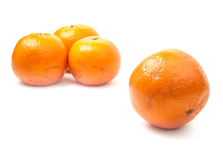 orange mandarines photo