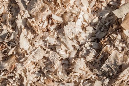 sawdust: sawdust Stock Photo
