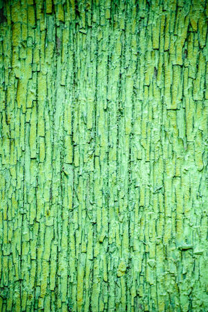 Old fence painted in green, wooden background photo