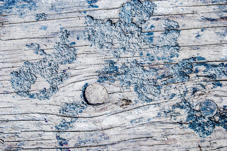 in vain: Wood Texture Background