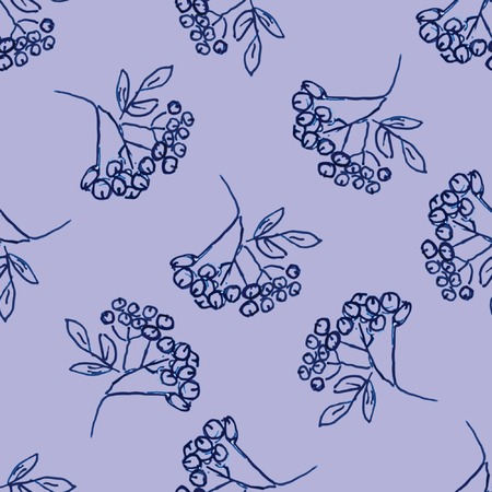 aronia: Seamless pattern with hand drawn berries Illustration