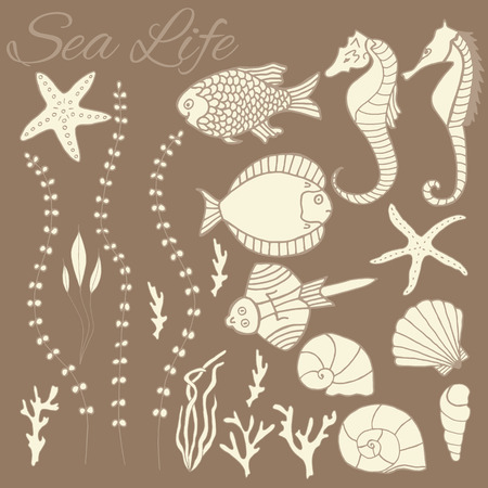 Design elements for topics of tropical sea life and seafood. Vector