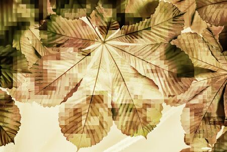 megabyte: colorful background with pixelated chestnut leaf